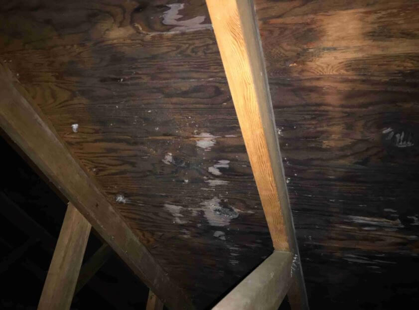 Water Damage Due to Leaks in Attic